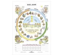 DUO Das Jahr / Lernkarte