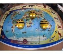 Bee Bot-Matte Wo leben die Tiere?