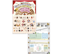 Dinocard Orchester / Musikschule