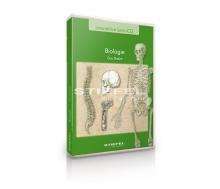 Biologie - Das Skelett
