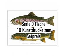 Kunstdruck I Paketpreis Serie 9 Fische