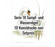 Kunstdruck I Paketpreis Serie 18 Wasservögel